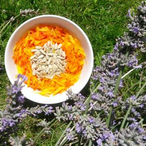 sunflower slaw